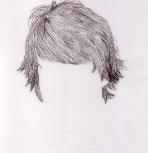 Untitled (hair drawing #1) 8x10""